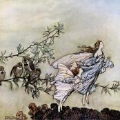 The fairies have their tiffs with the birds - Peter Pan in Kensington gardens de James Matthew Barrie fut magnifiquement illustré par Arthur Rackham. L'oeuvre entière est disponible sur le site de la bibliothèque en ligne du projet Gutenberg: The Project Gutenberg
